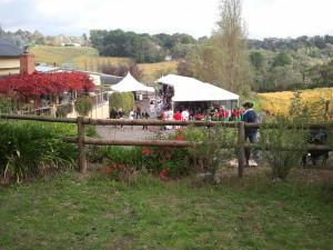 Kellybrook Cider Festival 2014